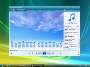 Windows Media Player 12-Análisis completo
