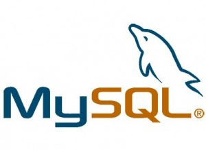 Descarga MySQL 5.0 | Análisis completo
