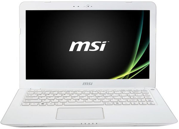 MSI-S30